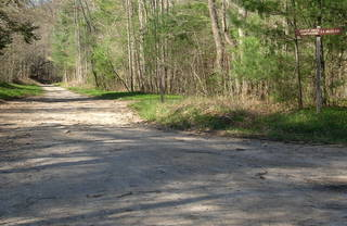 Cooper Creek Road