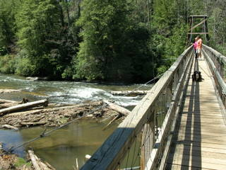 Swinging Bridge Cable West View